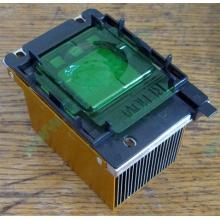 Радиатор HP p/n 279680-001 (socket 603/604) - Петрозаводск