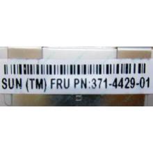 Серверная память SUN (FRU PN 371-4429-01) 4096Mb (4Gb) DDR3 ECC в Петрозаводске, память для сервера SUN FRU P/N 371-4429-01 (Петрозаводск)
