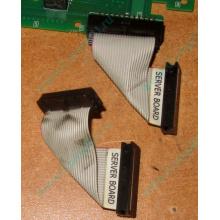 6017B0045701 Шлейф 24 pin для Intel C74974-401 T0043401-B01 корпуса SR2400 (Петрозаводск)
