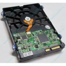 Жесткий диск 80Gb HP 404024-001 449978-001 Hitachi 0A33931 HDS721680PLA380 SATA (Петрозаводск)